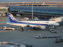 まっつーさんが、羽田空港で撮影した全日空 A320-211の航空フォト(飛行機 写真・画像)