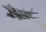 yokopen2さんが、千歳基地で撮影した航空自衛隊の航空フォト(飛行機 写真・画像)