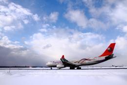 えすてるさんが、新千歳空港で撮影したトランスアジア航空 A330-343Xの航空フォト(写真)