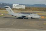 北の熊さんが、新千歳空港で撮影したアメリカ空軍 C-17A Globemaster IIIの航空フォト(写真)