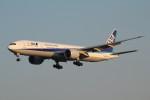 アイスコーヒーさんが、成田国際空港で撮影した全日空 777-381/ERの航空フォト(飛行機 写真・画像)