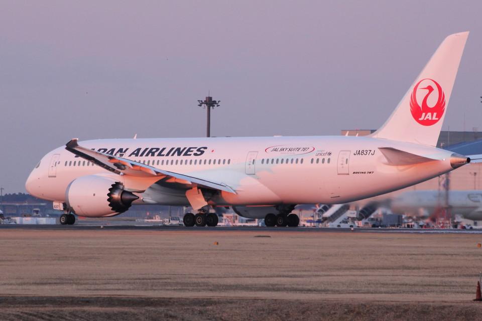 アイスコーヒーさんの日本航空 Boeing 787-8 Dreamliner (JA837J) 航空フォト