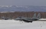 yokopen2さんが、千歳基地で撮影した航空自衛隊 F-15J Eagleの航空フォト(飛行機 写真・画像)