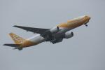 ATOMさんが、成田国際空港で撮影したスクート (〜2017) 777-212/ERの航空フォト(飛行機 写真・画像)