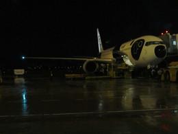 つくばーさんさんが、タンソンニャット国際空港で撮影した全日空 767-381/ERの航空フォト(飛行機 写真・画像)
