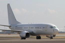肉食獣さんが、羽田空港で撮影したホンコン・ジェット 737-73W BBJの航空フォト(写真)