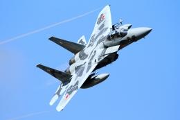 RUNDY!さんが、茨城空港で撮影した航空自衛隊 F-15DJ Eagleの航空フォト(飛行機 写真・画像)