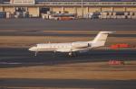 pringlesさんが、羽田空港で撮影したアメリカ企業所有 G-IV-X Gulfstream G450の航空フォト(写真)