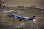 パンダさんが、松山空港で撮影した全日空 787-8 Dreamlinerの航空フォト(飛行機 写真・画像)