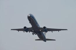 ニライカナイさんが、福岡空港で撮影したベトナム航空 A321-231の航空フォト(飛行機 写真・画像)