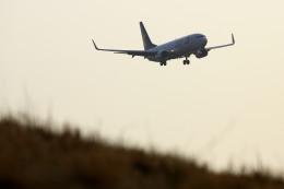take_2014さんが、茨城空港で撮影したスカイマーク 737-81Dの航空フォト(写真)