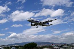 Fatman125さんが、伊丹空港で撮影した全日空 A320-211の航空フォト(飛行機 写真・画像)