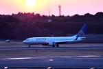 tsubasa0624さんが、成田国際空港で撮影したユナイテッド航空 737-824の航空フォト(飛行機 写真・画像)