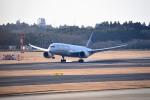 tsubasa0624さんが、成田国際空港で撮影したユナイテッド航空 787-8 Dreamlinerの航空フォト(飛行機 写真・画像)