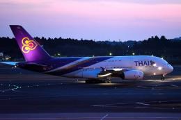 tsubasa0624さんが、成田国際空港で撮影したタイ国際航空 A380-841の航空フォト(飛行機 写真・画像)