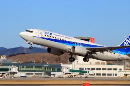 うみBOSEさんが、函館空港で撮影した全日空 737-881の航空フォト(飛行機 写真・画像)