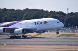 スーパードルフィンさんが、成田国際空港で撮影したタイ国際航空 A380-841の航空フォト(飛行機 写真・画像)