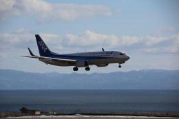 airdrugさんが、函館空港で撮影した全日空 737-881の航空フォト(飛行機 写真・画像)
