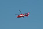 T.Sazenさんが、伊丹空港で撮影した北九州市消防航空隊 AS365N3 Dauphin 2の航空フォト(飛行機 写真・画像)
