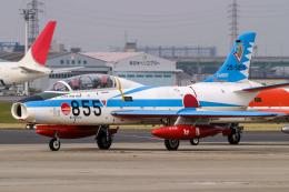名古屋飛行場 - Nagoya Airport [NKM/RJNA]で撮影された航空自衛隊 - Japan Air Self-Defense Forceの航空機写真