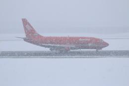 dianaさんが、新千歳空港で撮影したオーロラ 737-2J8/Advの航空フォト(飛行機 写真・画像)