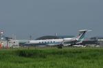 kumagorouさんが、仙台空港で撮影した海上保安庁 G-V Gulfstream Vの航空フォト(飛行機 写真・画像)