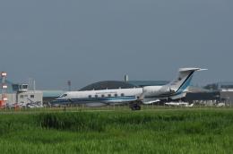kumagorouさんが、仙台空港で撮影した海上保安庁 G-V Gulfstream Vの航空フォト(写真)