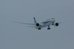 北の熊さんが、新千歳空港で撮影した全日空 787-9の航空フォト(写真)