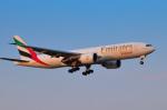 パンダさんが、成田国際空港で撮影したエミレーツ航空 777-F1Hの航空フォト(写真)