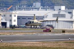 tsubasa0624さんが、八尾空港で撮影した賛栄商事 R66の航空フォト(飛行機 写真・画像)