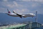 tsubasa0624さんが、関西国際空港で撮影した日本航空 737-846の航空フォト(写真)