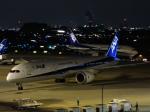 わたくんさんが、伊丹空港で撮影した全日空 787-9の航空フォト(写真)
