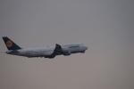 m-takagiさんが、羽田空港で撮影したルフトハンザドイツ航空 747-830の航空フォト(写真)