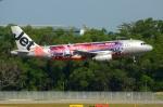 RUSSIANSKIさんが、シンガポール・チャンギ国際空港で撮影したジェットスター・アジア A320-232の航空フォト(飛行機 写真・画像)