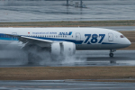 xxxxxzさんが、羽田空港で撮影した全日空 787-8 Dreamlinerの航空フォト(飛行機 写真・画像)