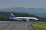 kumagorouさんが、石見空港で撮影した全日空 A320-211の航空フォト(写真)
