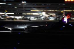 tsubasa0624さんが、羽田空港で撮影したハワイアン航空 A330-243の航空フォト(写真)