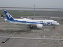 どっかの人さんが、羽田空港で撮影した全日空 787-8 Dreamlinerの航空フォト(飛行機 写真・画像)