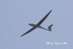 サイパンダマルコスさんが、岐阜基地で撮影した日本個人所有 DG-500Mの航空フォト(写真)