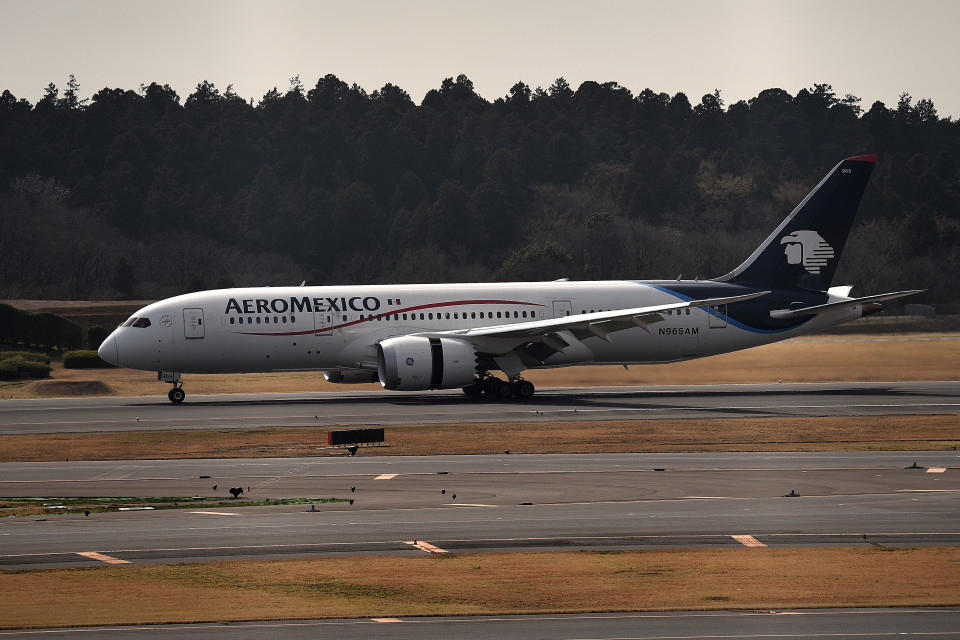tsubasa0624さんのアエロメヒコ航空 Boeing 787-8 Dreamliner (N965AM) 航空フォト