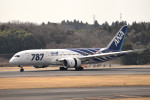 tsubasa0624さんが、成田国際空港で撮影した全日空 787-8 Dreamlinerの航空フォト(飛行機 写真・画像)