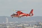 夏みかんさんが、名古屋飛行場で撮影した名古屋市消防航空隊 AS365N2 Dauphin 2の航空フォト(飛行機 写真・画像)