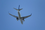 ANA744Foreverさんが、羽田空港で撮影した全日空 737-781の航空フォト(写真)