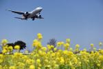 なないろさんが、福岡空港で撮影した日本航空 777-289の航空フォト(写真)