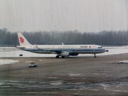 東方亜州さんが、長春龍嘉国際空港で撮影した中国国際航空 A321-232の航空フォト(飛行機 写真・画像)
