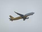 東方亜州さんが、那覇空港で撮影したバニラエア A320-216の航空フォト(写真)