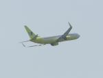 東方亜州さんが、那覇空港で撮影したジンエアー 737-8Q8の航空フォト(写真)