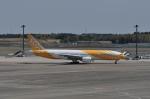 kumagorouさんが、成田国際空港で撮影したスクート (〜2017) 777-212/ERの航空フォト(飛行機 写真・画像)