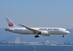 じーく。さんが、関西国際空港で撮影した日本航空 787-8 Dreamlinerの航空フォト(写真)