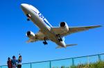 パンダさんが、伊丹空港で撮影した全日空 787-8 Dreamlinerの航空フォト(写真)